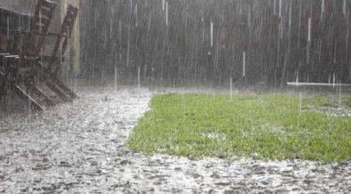 versickerung-garten-regen-ueberschwemmung-symbolbild-2000x1000px