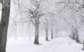 lagerung-winterdienst-winterlandschaft-schnee-kaelte-strasse